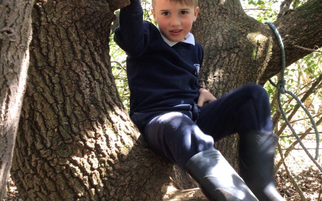 Reception's First Forest School Trip
