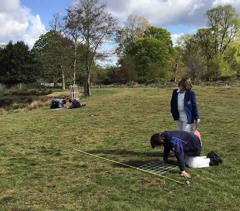 Richmond Park Fieldwork May 2021
